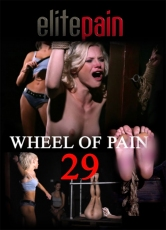 Elite Pain Wheel of Pain 29
