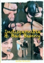 Insex Indiscernible & Bad Bunny