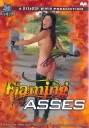 Bizarre Flaming Asses