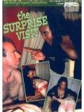 Kelly Payne  The Surprise Visit