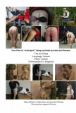 Schoolgirl Caning - MF/F Volume 1