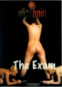 Elite Pain The Exam
