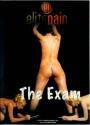 Elite Pain The Exam